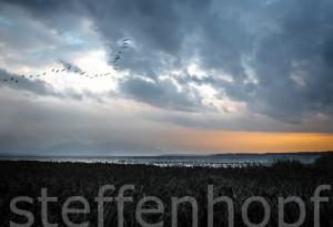 Herbst am Chiemsee (©steffenhopf)