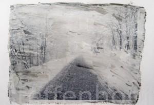 Transferbild Waldweg