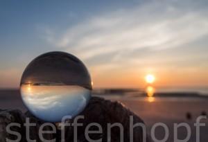 Murmelwelt am Strand