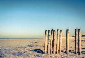Strandbuhne Nordsee