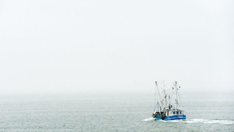 Fischkutter im Wattenmeer