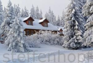Am Spiessberghaus, Thueringer Wald von Steffen Hopf