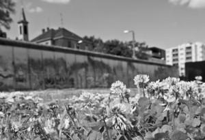Gedenkstaette Berliner Mauer, Bernauer Strasse. Mauerabschnitt mit Wiese von Steffen Hopf