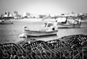 Reusen an der Algarve von Steffen Hopf