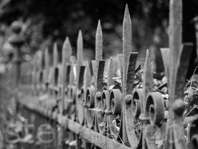 Eiserner Gartenzaun 01 © Steffen Hopf