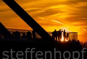 Sommerblicke - Sonnenanbeter 01
